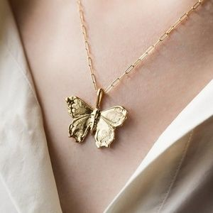 BUTTERFLY AND CHAIN